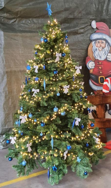 Weihnachtsbaum mieten 2.30 meter hoch bei Carpe Diem Events aus Selfkant