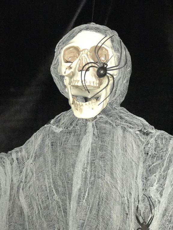 Halloween Spider Skeleton
